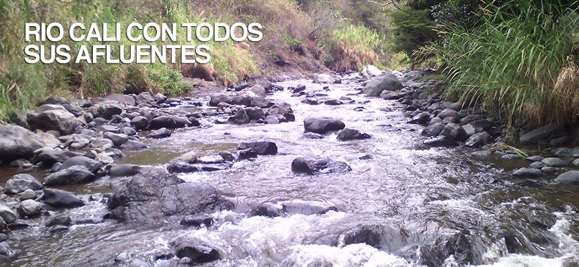 RIO-AGUACATAL-RIO-CALI-CON-TODOS-SUS-AFLUENTES-